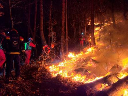 韩国江原道山火燃烧18个小时后被扑灭