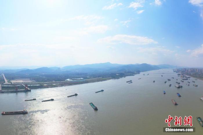 中国农业农村部:大力推动长江野生江鲜禁售禁食